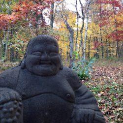 JOYfully sit. BE present. Tap into ONEness Vibration.